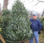 Huntington Lions Club member Gerald Smelser holds up a Frasier fir tree for sale at the Lions Club lot across from Memorial Park Saturday, Nov. 22. More than 400 trees were delivered to the club for its annual Christmas tree sale.