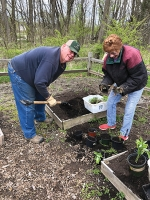 Master Gardeners Gary Hiatt (left) and Kay Lilie dig up and pot plants in the garden at the Upper Wabash Interpretive Center at Salamonie Reservoir. The Master Gardener's fall plant sale will be Saturday, Sept. 12, at the Forks of the Wabash.