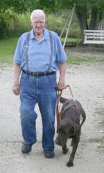 Aspen, a chocolate Labrador retriever Leader Dog, leads Bud Walker down Walker's driveway in Andrews. Walker got Aspen three years ago through the Leader Dogs for the Blind program.