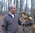 Huntington County resident Kirk Strass hunts with a red-tailed hawk, trained to find rabbits and squirrels and return to his handler when the hunt is over.
