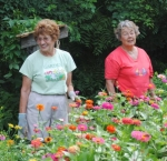 Master Gardeners (from left) Kay Lilie and Liz Snively check on the zinnias at the Master Gardeners' garden outside the Upper Wabash Interpretive Services Center at Salamonie Reservoir on Monday, Aug. 9.