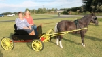 "Sisters Janet Siela (left) and Rhonda Brewer recreate a photo taken of them back in the '60s in the pony cart they had as children. The ""now"" photo was taken Sept. 7, on the property of their father, George Wissinger, located in rural Huntington. The cart had been deteriorating inside a barn and was restored by family friend John Meyer."