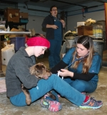 "Autumn Trombley (left), of Jonesville, MI, holds a dog, ""Lenny,"" while Faith Lenard, of New Haven, checks his heart rate at the Huntington County Humane Shelter on Tuesday, Jan. 6. Trombley and Lenard are students at the Vet Tech Institute at International Business College, in Fort Wayne, which sends students to the shelter once a month to look after the animals and gain real-world experience."