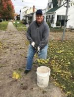 Jack Wilson uses a special wire basket to pick up walnuts along Cherry Street in Huntington. Wilson had a pretty good haul this year – around 1,150 pounds of the nuts – which he sells to benefit Love In the Name of Christ.