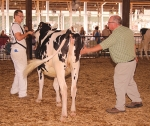 Chase Williams (left) holds on to his cow while Judge David Metzger takes a look at the bovine during the Huntington County 4-H Fair Dairy Show on Saturday, July 20, in the Parkview Huntington Hospital Show Arena.