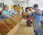 4-Her Jacob Ellet (second from left) contemplates as rabbit judge Tom Berger (right) examines one of his New Zealand market pen rabbits during the 4-H market rabbit show held Sunday, July 21, in the First Federal Savings Bank Community Building at the Huntington County Fairgrounds. Ellet took eighth place in the class.