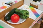 Makayla Smith's garden vegetables entry project sports a colorful ribbon following judging on Thursday, July 23, at the Huntington County 4-H Fair.