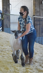 Showing her sheep in the ring at the Huntington County 4-H Fair on Saturday, July 25, is Sierra Tolen, a 10-year 4-H member.