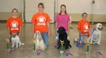 The Huntington County 4-H Fair Dog Show crowned its agility champions after competition at Hier's Park on Sunday, July 13.
