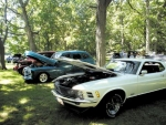 The Markle Wildcat Festival Car and Truck Show will take place Sunday, Aug. 26, from 8 a.m. to 2 p.m. at the Markle Fish and Game Club Park. Registration will start at 8 a.m.