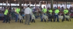 Judge Nick Riecke evaluates the sheep showmanship skills of 4-H members (from left) Josh Leidig, Michael Thompson, Sarah Hunnicutt, Braydon Poulson, Jada Johnson, Rachel Jackson and Kaitlyn Drayer.