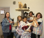 The Junior Volunteers from Helping Paws, a no-kill feline facility, in Huntington, pose with cats at the facility on Saturday, Oct. 13.