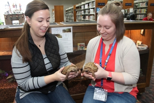 Huntington City-Township Public Library Professional Assistant Amber Hudson (left) holds Ace, the tortoise, and Marketing Specialist Devon Henderson holds his buddy Zed, the resident Russian tortoises at the Huntington Branch. The pair of mascots will be featured in the library's winter circulation campaign, aimed at a goal of 200,000 items checked out in 2018.
