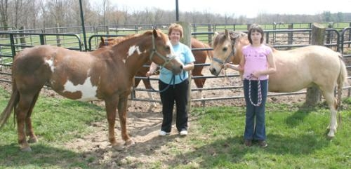 "Laura Mason (left) and daughter Brianna are pictured with two of their horses that recently won horse of the year. Mason and her husband Eric Mason, operates Pine Hollow Paints. Laura holds ""Last Sunshine,"" while Brianna holds ""Sunni's Spinning Fool."""