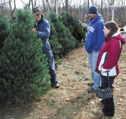 Huntington Lions Club member Herb Mills (left) helps Lagro residents Justin Cole and Sara Wallace pick out the perfect Christmas tree during the club's 2010 sale in Huntington.