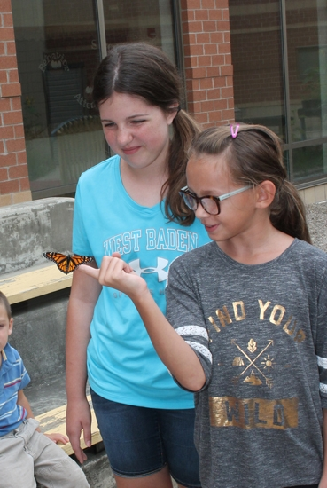 Flint Springs Elementary fifth-grader Gabby Betterly (right) uses her finger as a launch pad for the inaugural flight of a newly-emerged monarch butterfly Thursday, Aug. 31, in the school's courtyard garden. She is joined by Paige Russell, also in fifth grade. The butterfly was raised in teacher Courtney Whitney's preschool classroom. The pupils in the afternoon class waved goodbye as they watched the butterfly find its way out of the courtyard.
