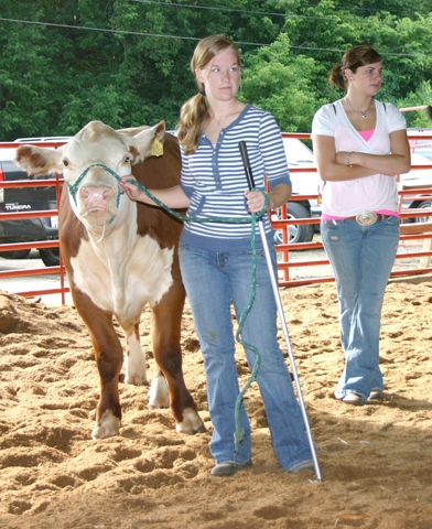 Sarah Doctor, left, waits for her name to be called to take her steer into the show arena during the cattle auction. Brittany Dilley, back right, watches the auction.