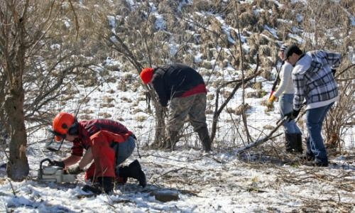 On a snowy March Friday, volunteers (from left to right) Caleb Richardson, Jed Brooks, Abby Comfort and Scott McElhaney work to clear brush at the Flint Creek Facility, readying it for the New Sotterlee Project's upcoming King's Cup competition.