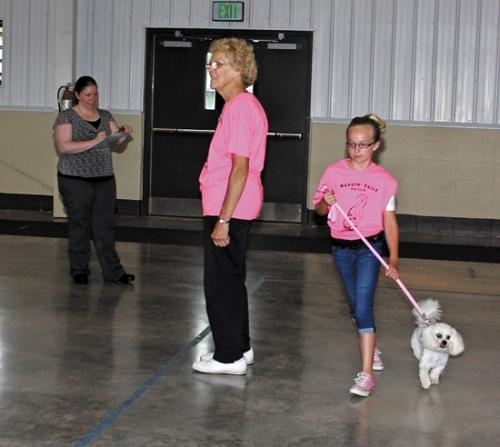Hannah Warpup (right) shows off her dog's agility skills at the 2013 Huntington County 4-H Dog Show on Saturday, July 6. Judge Alicia Bloomfield (left) watches as the pair makes its way through a figure eight route.