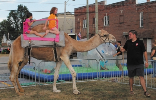 Evan Wall (right), of Hoosier Camel Encounter, leads a camel around the ring, giving rides to Alexia Blackstone (front) and Ashlyn Harshbarger during the 2016 Andrews Summer Festival. The camels will return to this year's festival on Friday and Saturday, Aug. 11 and 12.