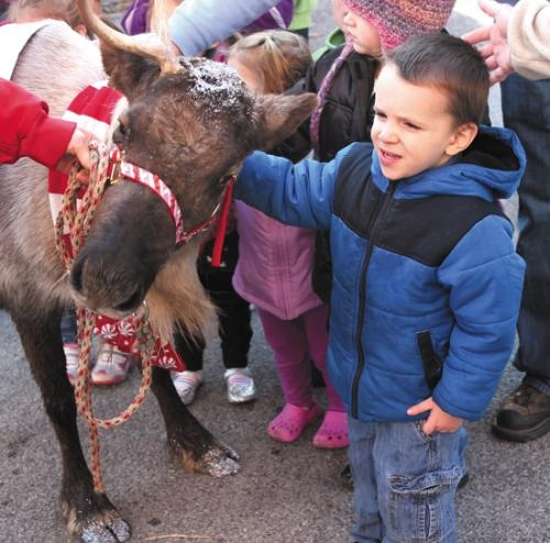 Robert Stone meets Candy Cane the reindeer during last year's Christmas in the City festivities in downtown Huntington. A live reindeer will again be part of the event this year, which begins with Santa's arrival on Saturday, Nov. 24, at 10 a.m.