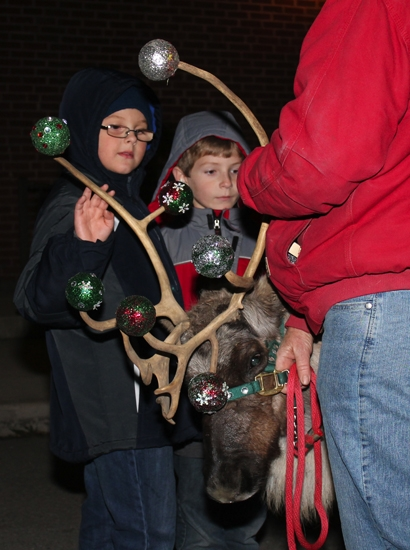 Cameron Bixler (left) and Charlie Zehner get acquainted with a live reindeer during the 2012 Holiday Walk and Festival of Trees in Warren. Reindeer and trees return to Warren on Friday, Nov. 22.