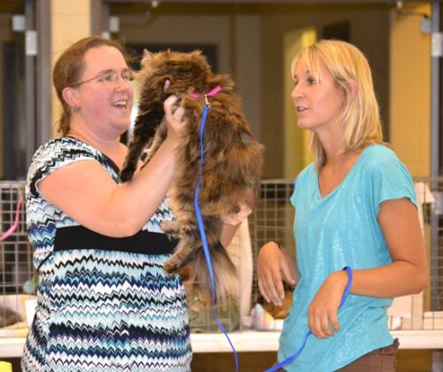 Brooke Dennis (right) listens as Judge Windy Johnston critiques her cat during the Huntington Cuntyh 4-H Cat Show on Tuesday, July 17, at Hier's Park.